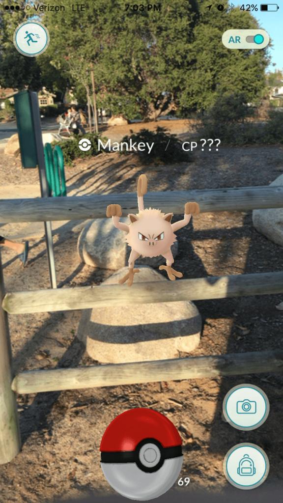 PokemonGo (13)