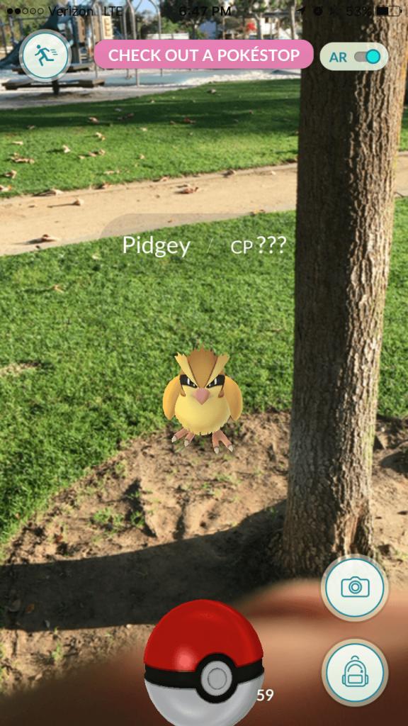 PokemonGo (7)